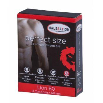 Préservatifs Perfect Size 60 Lion Boîte de 3