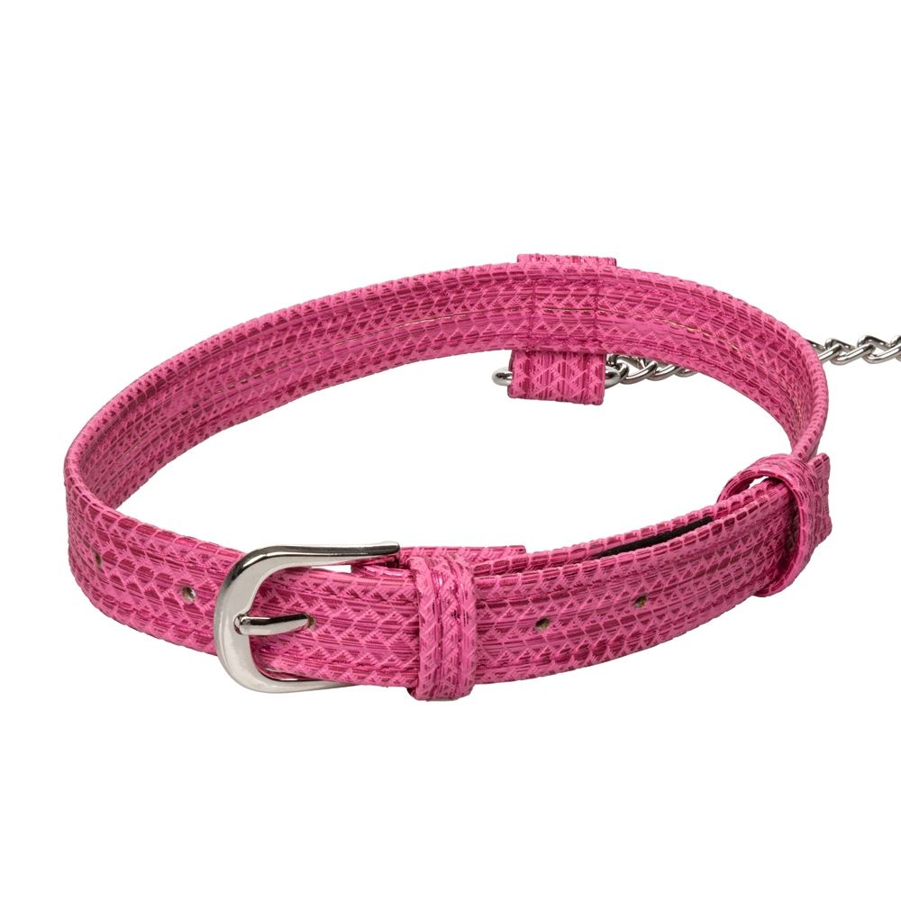 Collier & Laisse Tickle Me Pink