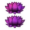 Caches-Seins Lotus Holographique Rose