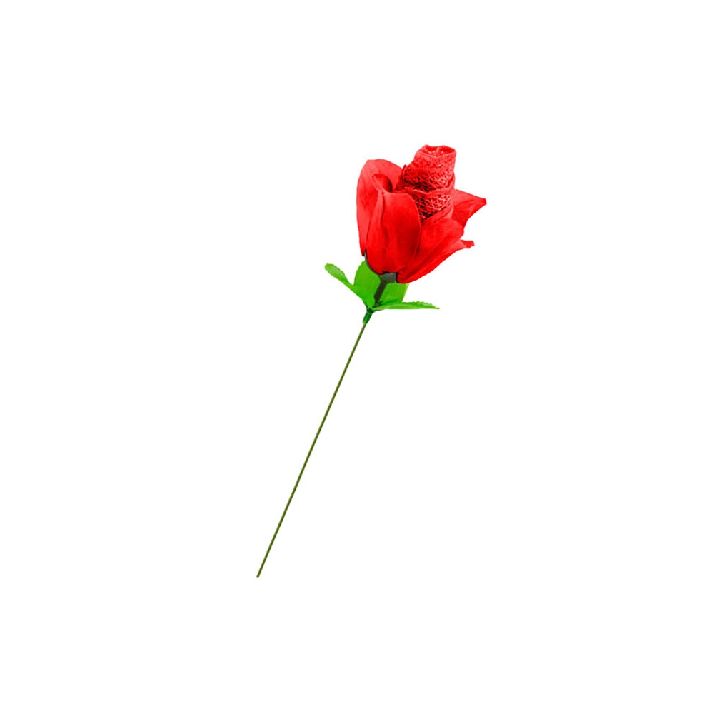Rose Culotte Sexy