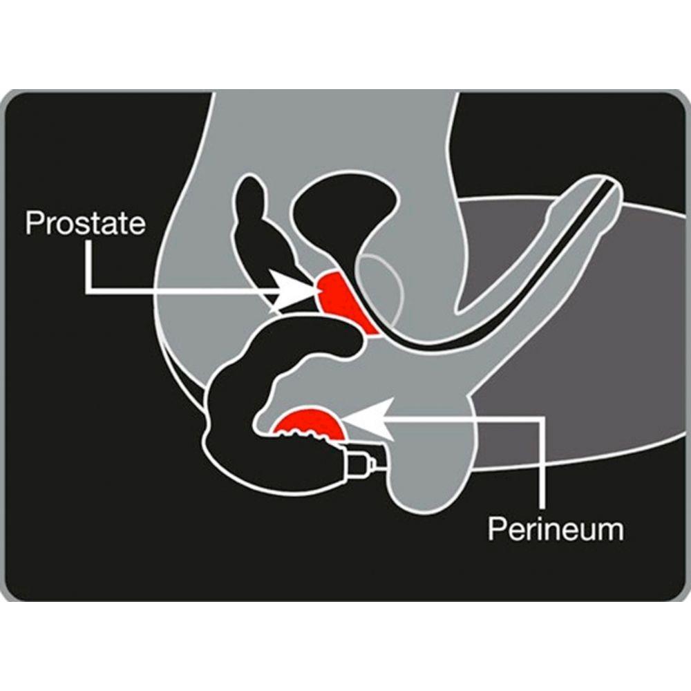 Stimulateur prostatique Bad Boy