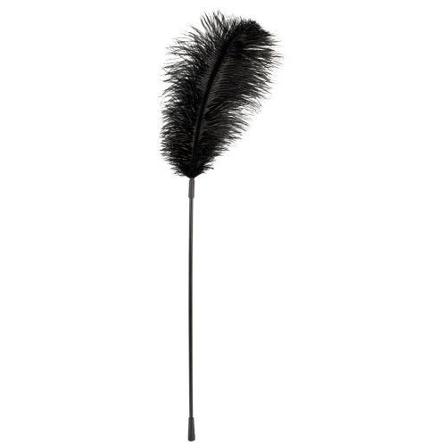 Grand Plumeau Noir Plume