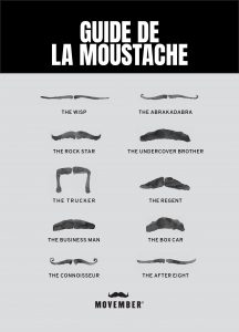 Moustaches Styles
