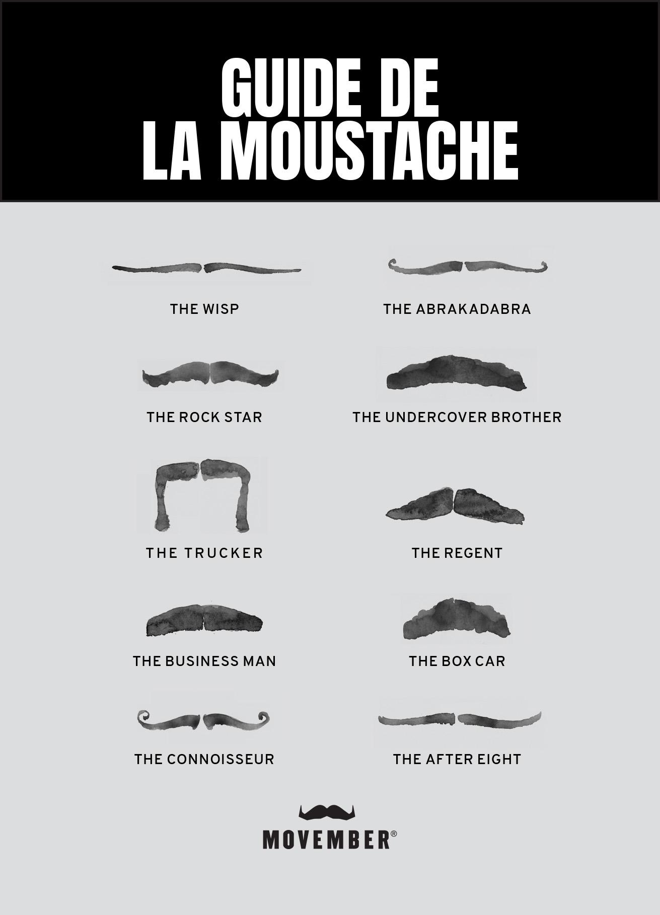 Guide de la moustache