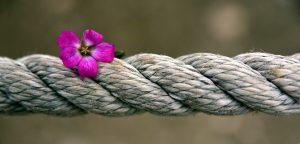 corde-bondage-espaceplaisir