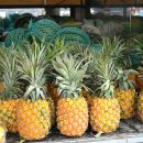 fruits-exotiques-ananas