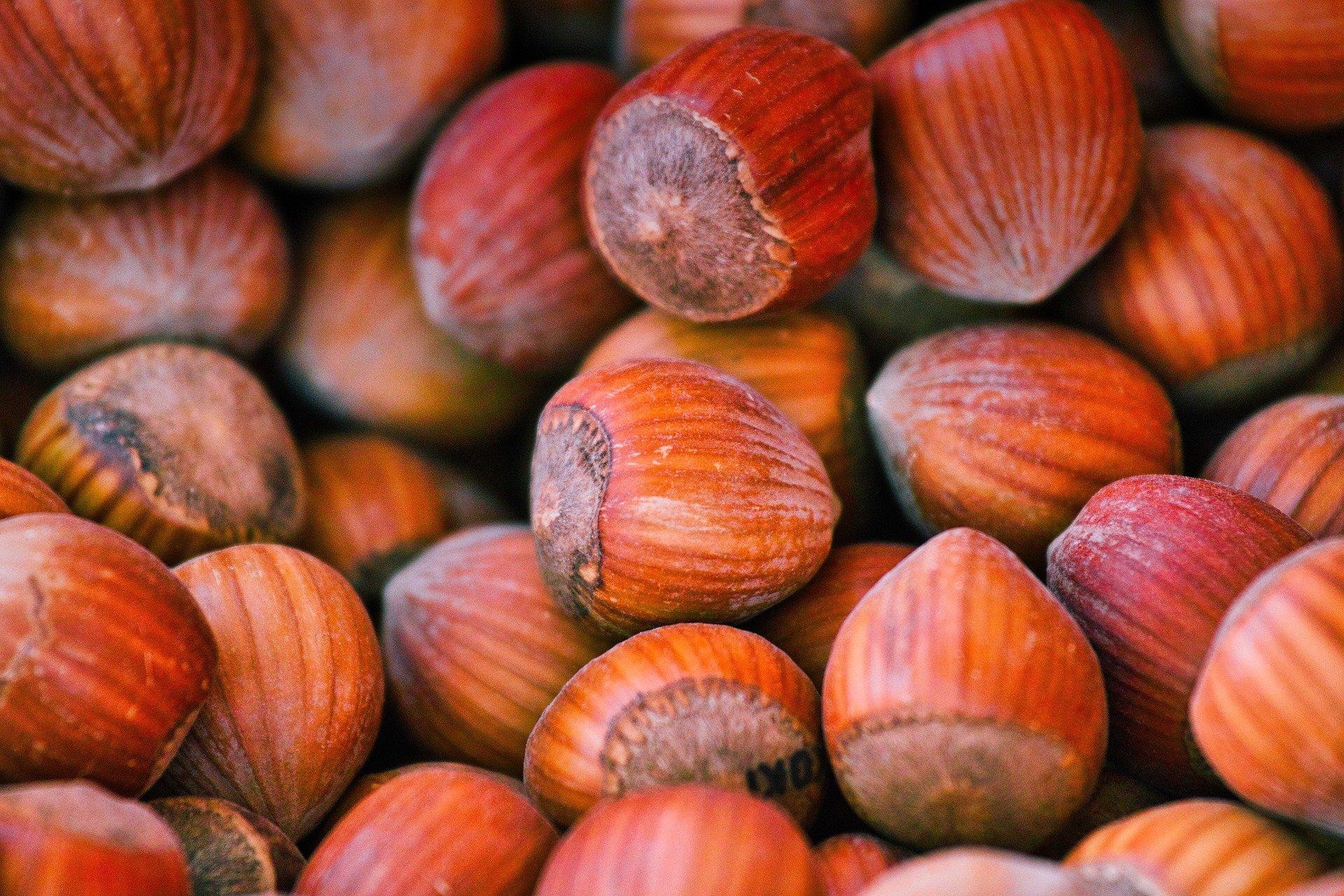 no-nut-november-challenge